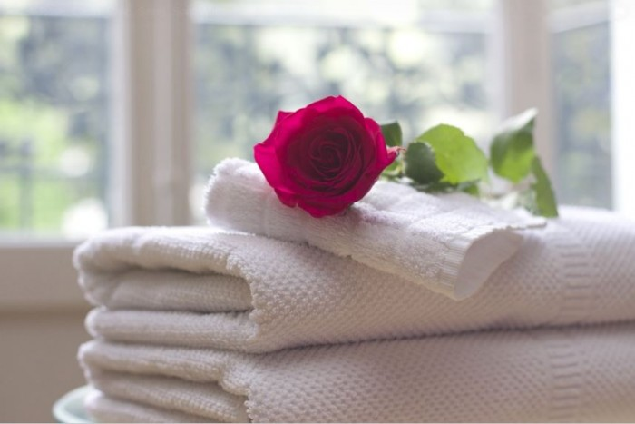 gambar-bunga-mawar-lalieur