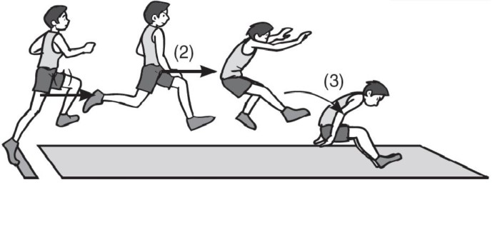 Lompat Jauh Pengertian Sejarah Lapangan Teknik Dasar Lompat Jauh Salamadian